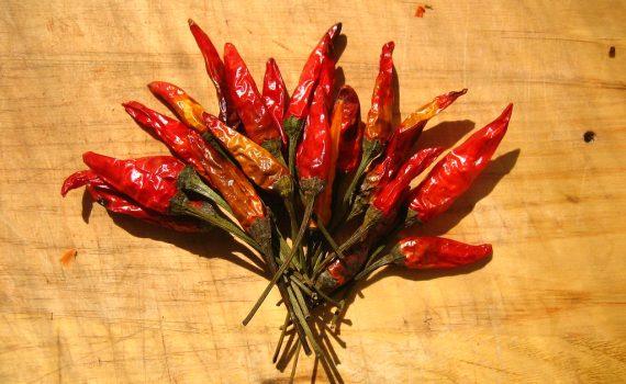 peperoncino secco rosso a mazzetti