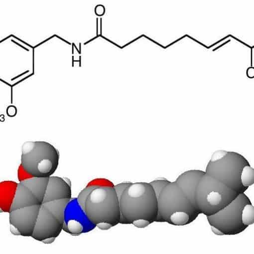 capsaicina molecola